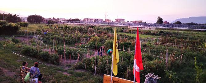 foto fondo agricolo nappo