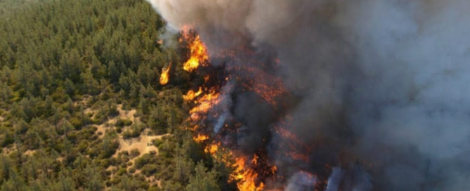 foto incendi campania