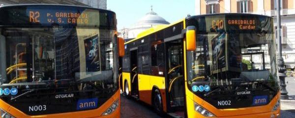 foto bus anm