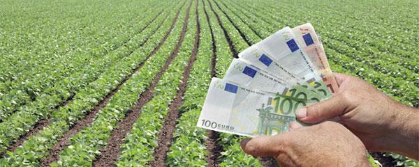 foto banca agricoltura
